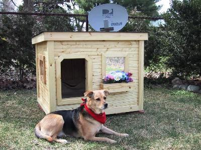 dog house plans, k-9 law enforcement dog house plans